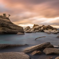 bonsai-rock-lake-tahoe
